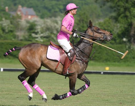 More Ponies For Polo by List Learn How To Play Polo List