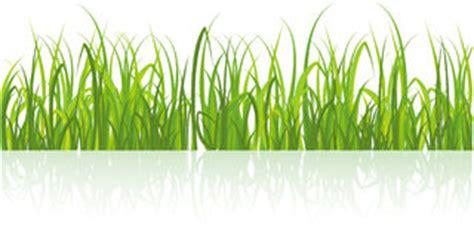 Gras An Die Wand Malen by Malendes Gr 252 Nes Gras Auf Wei 223 Lizenzfreies Stockbild