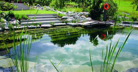 Piscine Naturelle Autoconstruction 4612 by La Zone De R 233 G 233 N 233 Ration Ou D Oxyg 233 Nation De Votre Piscine