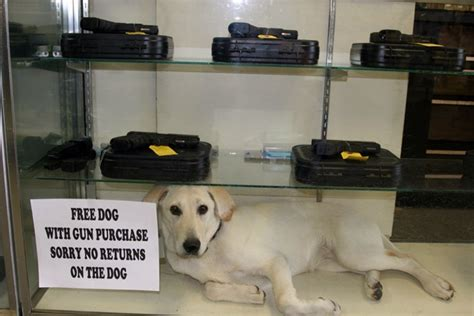 free of with dogs free with gun purchase