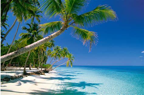 Sun Bell Tuna Rica Rica maldive tornano i colori doveviaggi it