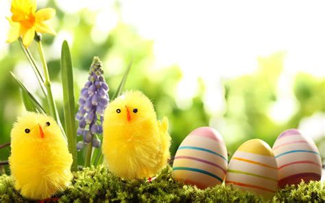 google wallpaper easter easter wallpapers android apps on google play