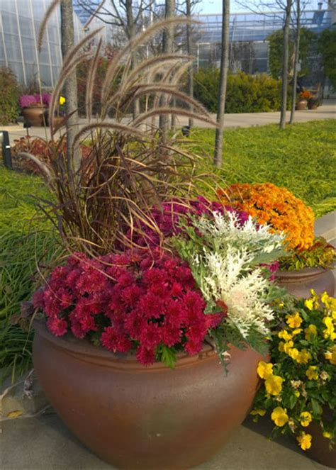 home depot garden containers refresh containers with cool fall flowers and foliage
