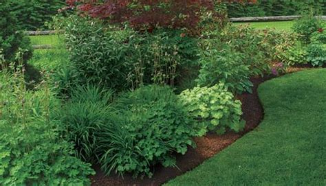 invisible flower bed borders  natural  beautiful