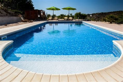 How To Add Privacy To Backyard Large Swimming Pool 10mx5m Picture Of The Roost