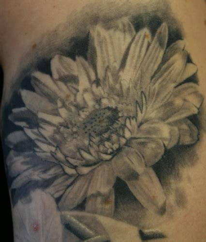 gerber daisy tattoo large image leave comment