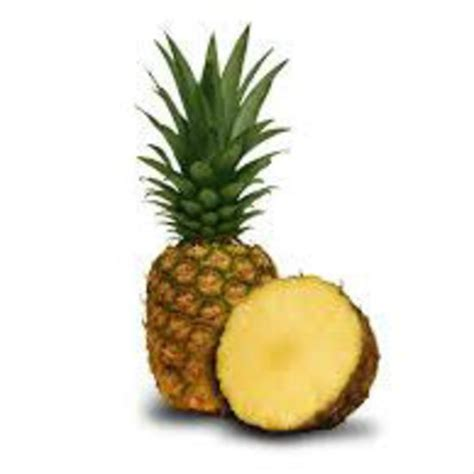 fruit extracts pineapple fruit extract fruit extracts extracts