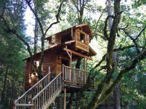 home tree building your own tree house how to build a house