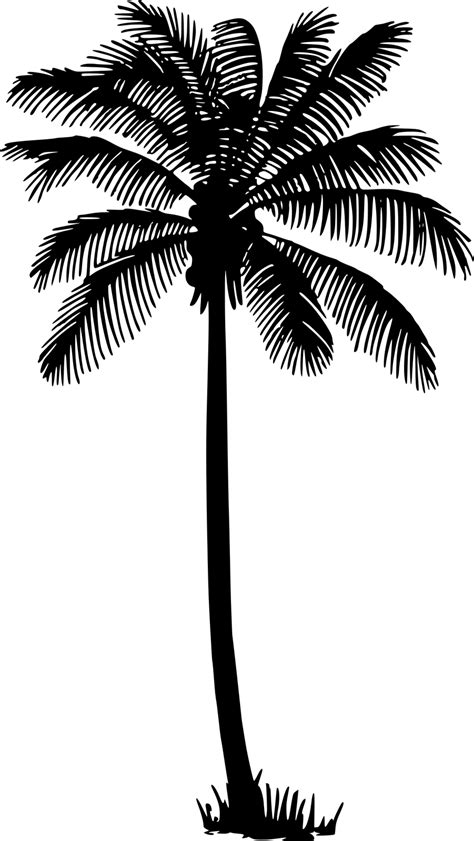 palm tree svg palm tree silhouette cliparts co