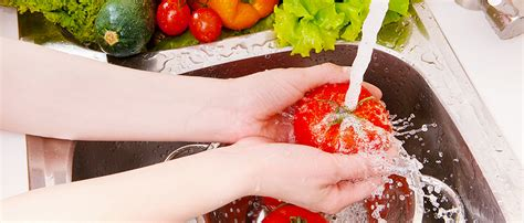 haccp test food hygiene quiz and answers autos post