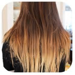 ombr 233 for light brown hair hair