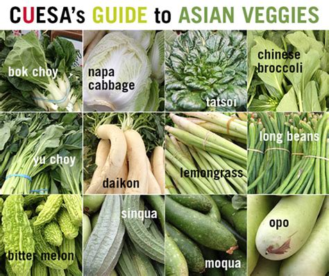 vegetables used in asian cooking a guide to asian vegetables cuesa