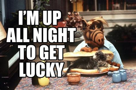 Alf Meme - alf meme memes