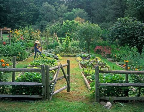 Fruit Garden Layout Vegetable Garden Makes Me Want A Fence
