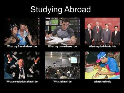 Study Abroad Meme - studying abroad what people think i do meme