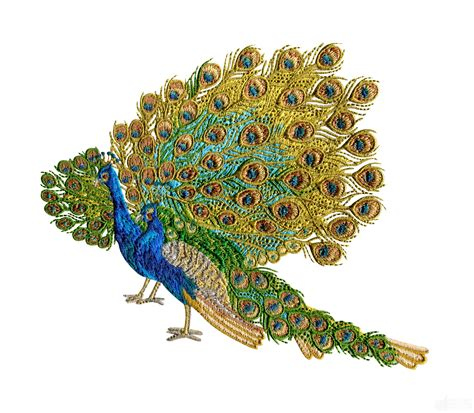 embroidery design of peacock swnpa137 peacock embroidery design
