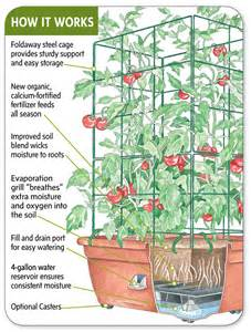self watering pots edible landscaping made easy with