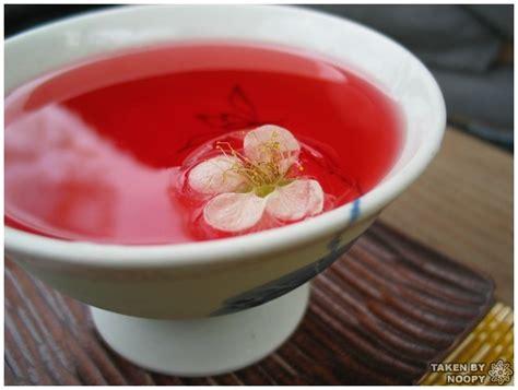Minuman Ginseng Korea minuman unik khas korea selatan 2 ngebro
