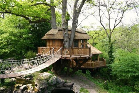 tree house plans uk blue forest s thatched cliffside lodge wraps itself around a tree inhabitat green design