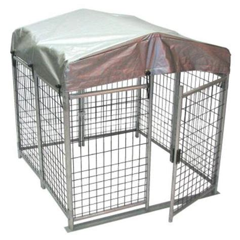 kennels home depot 4 ft x 4 ft x 4 ft folding kennel qkf444 the home depot