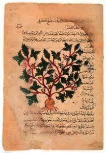 libro el herbario de las herbario