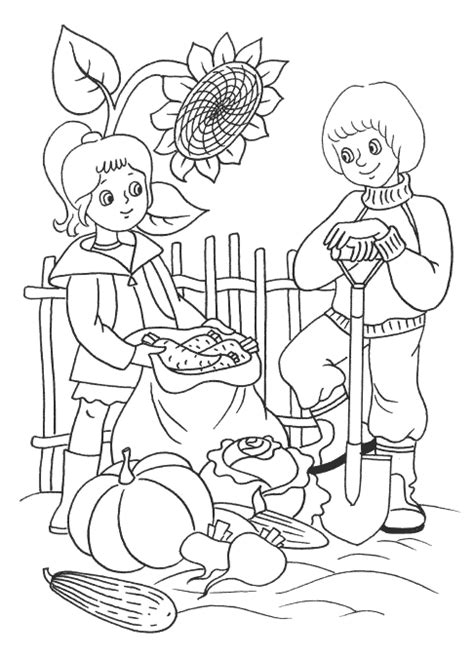 autumn vegetables coloring pages coloring page harvest vegetables