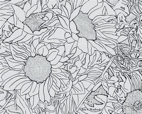 coloring pages for adults sun sun adult coloring pages freecoloring4u com