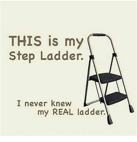 Ladder Meme - 25 best memes about step ladder step ladder memes