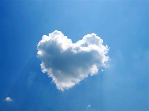cloud 9 supplements bracken windshimmer cloud nine