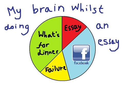 big fat geeky english blog  pie chart