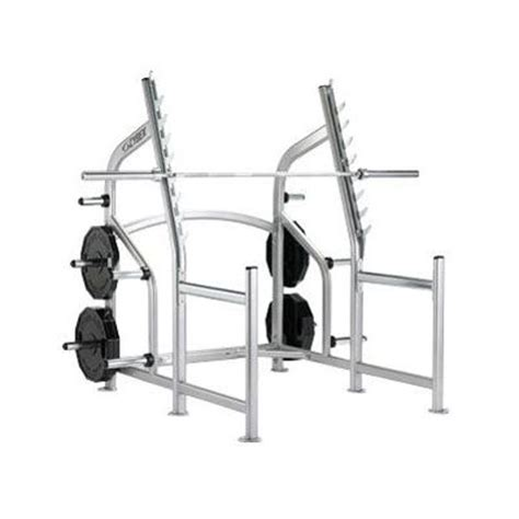 cybex free weights squat rack