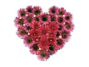 wallpaper flower with heart heart flower 14 wallpapers heart flower 14 photos