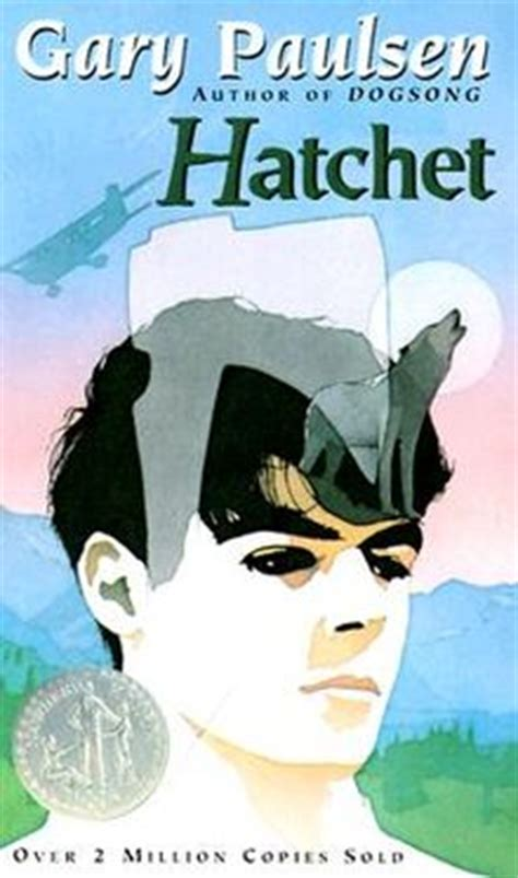 pictures of the book hatchet hatchet novel