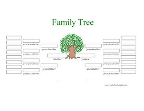cool family tree template a color five generation family tree has white boxes