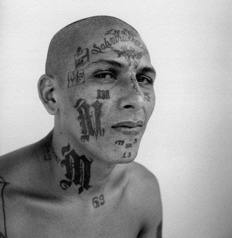 mara salvatrucha tattoos mara salvatrucha search the forgotten
