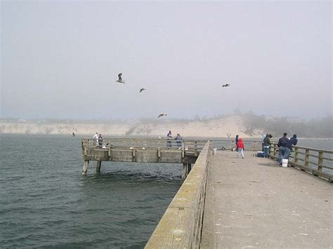 south jetty fishing crabbing pier