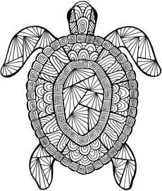 turtle coloring pages for adults detailed sea turtle advanced coloring page a to z