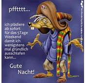 35 Best Gute Nacht Images On Pinterest  Funny Pics Good