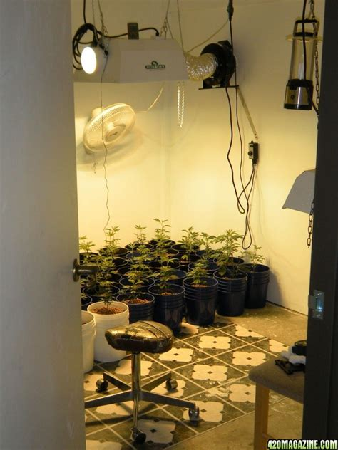 the grow room my 1 1 11 new year grow room