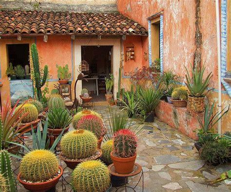 Backyard Cactus Garden by 25 Best Ideas About Outdoor Cactus Garden On