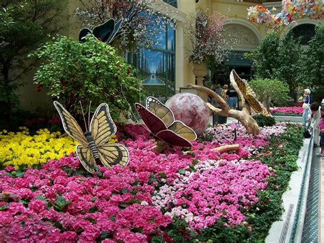 Bellagio Flower Garden Luxury Las Vegas Usa The Bellagio Hotel Conservatory Butterfly