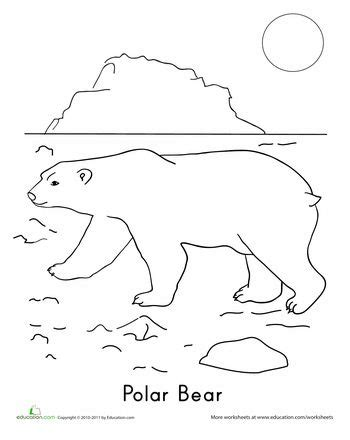 bear coloring pages for preschoolers 11 best images of arctic animals activities and worksheets