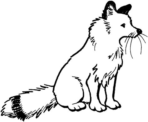coloring page red fox red fox coloring pages fitfru style cartoon fox