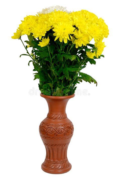 fiori nel vaso fiori nel vaso immagine stock immagine di crisantemi