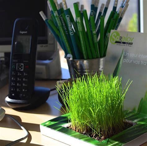 plante de bureau plante de bureau publicitaire un cadeau client sp 233 cial