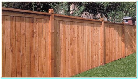 types of privacy fences for backyard best type of privacy fence torahenfamilia com popular