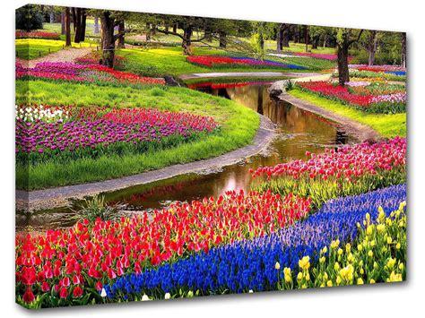 fiori colorati immagini co di fiori colorati poster adesivo murale sta su