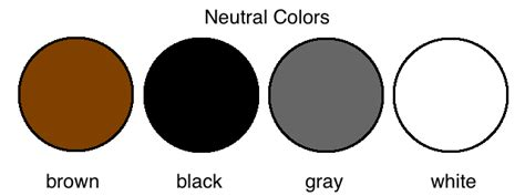 is black a neutral color home design