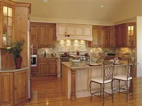 Kitchen Design Photos Gallery by Traditional Kitchen Kitchen Design Ideas Kitchen