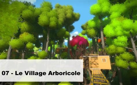 the witness ps4 walkthrough ios android guide unofficial books 07 le arboricole astuces et guide the witness